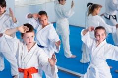 karate-class3