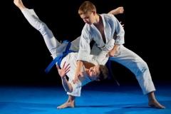 martial-arts-throw